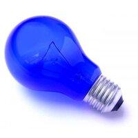 Лампа накаливания вольфрамовая (синяя) тип А55 С 230-60 (Е27)